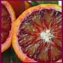 Blood Orange lable